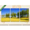 Képáruház.hu Fákkal szegélyezett mező(125x60 cm, L02 Többrészes Vászonkép)