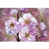 Komar Blooming Gems vlies poszter, fotótapéta XXL4-064 /368x248 cm/