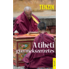 Kossuth Kiadó Tenzin Gyatso: A tibeti gyermekszerzetes