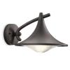 Kültéri Fali lámpa antracit 1x15W 230V Cedar - Consumer Philips - 17207/93/16