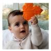 Lanco - rágóka, őszi levél