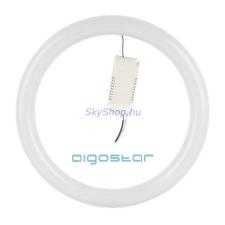 LED fénycső kör T9 24W hideg fehér izzó