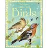 Little Book of Birds