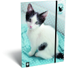 LizzyCard Gumis mappa A/4 Kis bagoly Cat Blue 18575401