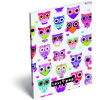 LizzyCard Notesz papírfedeles A/6 Lollipop Light Owl 17405523
