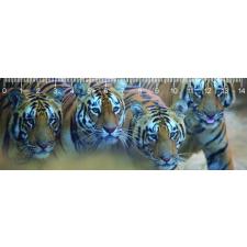 Mapcards.net s.r.o. Mapcards 3D vonalzó 14cm, bengáli tigrisek vonalzó