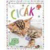 Móra Kiadó Cuki cicák - Matricás foglalkoztatókönyv