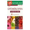 Naturland Fruit gyümölcstea variációk 20 filter 40 g