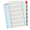 Nebuló Regiszter, laminált karton, A4 Maxi, 1-31, újraírható, ESSELTE