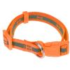 Neon narancssárga kutyanyakörv, S méret, S