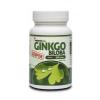 Netamin Szuper Ginkgo Biloba 300 mg tabletta 60 db