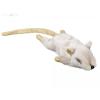 Nobby kutyajáték plüss egér világos barna 14,5cm