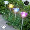 Oh My Home Solar Flower Lámpa