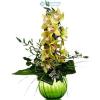 Orchidea fürt zöldekkel díszítve (sárga)