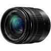 Panasonic Lumix G Vario 12-60mm f/3.5-5.6 Asph