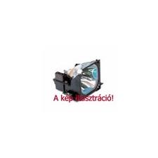 Panasonic PT-50LC13-K OEM projektor lámpa modul projektor lámpa