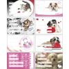 PANTA PLAST Füzetcímke, 24 db, PANTA PLAST, Girls (INP424000470)