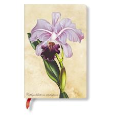 Paperblanks butikkönyv Brazilian Orchid mini üres füzet
