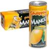 Philippine mangó juice 250 ml