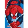 Pókember Kéztörlő arctörlő, törölköző Spiderman, Pókember 30*50cm