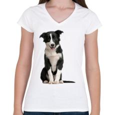 PRINTFASHION Border collie póló - Női V-nyakú póló - Fehér