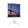 PROJECTA Picture King Portable and Tripod Screen, 244x244cm