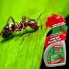Protect rovarirtópermet 500 ml