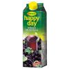 Rauch happy day 1 l feketeribizli 25%