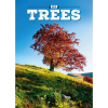 REALSYSTEM Falinaptár 2018 - Trees 2018, 33 x 46 cm
