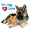REALSYSTEM Falinaptár 2018 - Young Love – Kittens & Puppies 2018, 30 x 30 cm