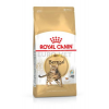 Royal Canin Bengal Adult 0,4 kg