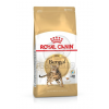 Royal Canin FBN Bengal 400 g