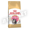 Royal Canin FBN Persian Kitten 10kg