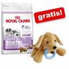 Royal Canin Mini Starter Mother&Babydog 4 x 8,5 kg