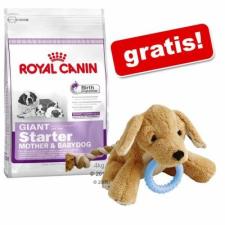 Royal Canin Mini Starter Mother&Babydog 4 x 8,5 kg kutyaeledel