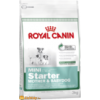 Royal Canin Mini Starter Mother & Babydog 8.5kg