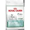 Royal Canin Mini Starter Mother & Babydog kutyatáp
