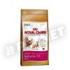 Royal Canin Sphynx 33 500g