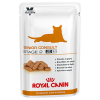 Royal Canin Veterinary Diet Royal Canin Neutered Senior Stage 2 - Vet Care Nutrition - 24 x 100 g