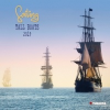 Sailing tall Boats 2019