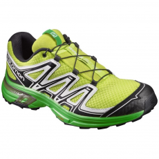 Salomon Shoes Wings Flyte 2 multisport cipő D