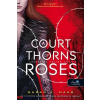 Sarah J. Maas A Court of Thorns and Roses - Tüskék és rózsák udvara (Tüskék és rózsák udvara 1.)