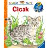 Scolar Kiadó Cicák - scolar - mini