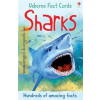 Sharks fact cards
