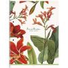 SHKOLYARYK Spirálfüzet,  A4+, kockás, 80 lap, SHKOLYARYK Secret Garden, vegyes (SB80992K)