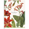 SHKOLYARYK Spirálfüzet,  A4+, vonalas, 80 lap, SHKOLYARYK Secret Garden, vegyes (SB80992L)