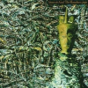 SIOUXSIE & THE BANSHEES - Juju /+3 bonus track/ CD