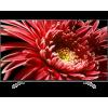 Sony KD-65XG8505B