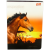 St-Majewski Inspiration lovas A5-ös vonalas 1. osztályos füzet - fehér 14-32
