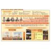 Stiefel Basic Facts about Great Britain DUO + 10 db ajándék tanulói munkalap